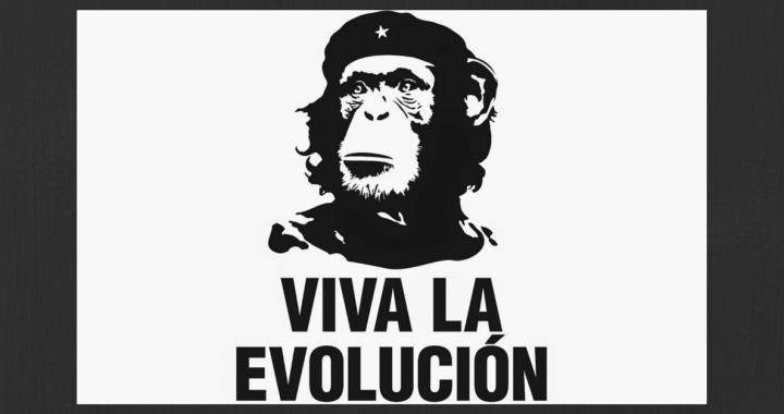 viva la evolucion Dawrin day scoperte scientifiche